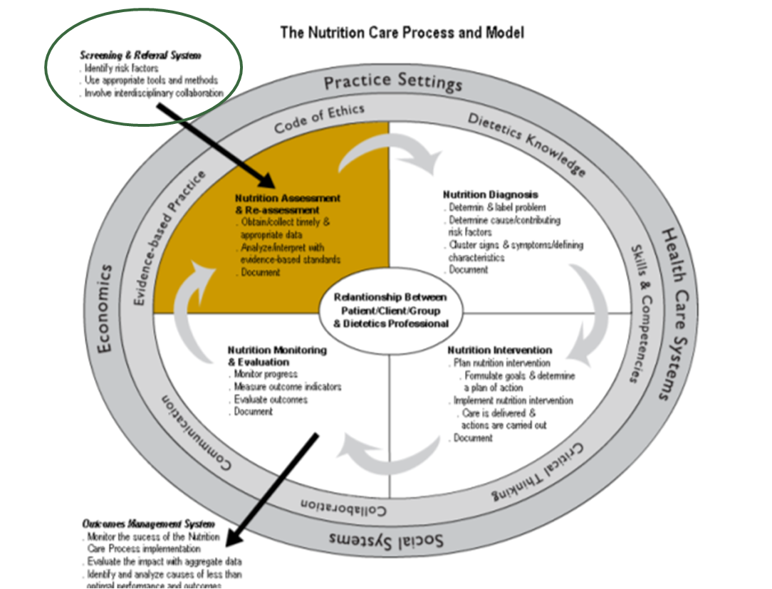 Nutrition Care Process and Model